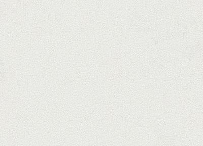 Vliestapete 10004-25 Erismann Tapete Struktur Uni weiß 1000425 BOR